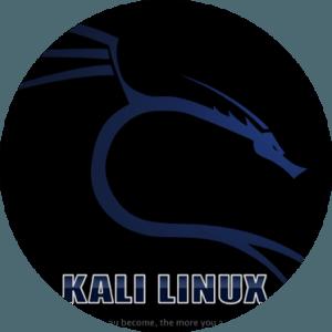 hackeos web con kali-linux